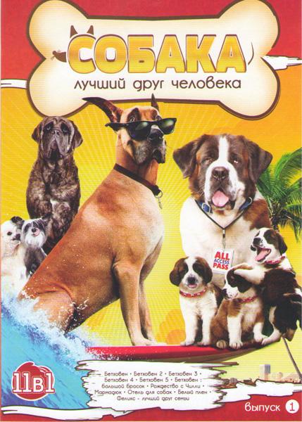 Собака лучший друг человека (Бетховен 1,2,3,4,5 / Бетховен Большой бросок / Рождество с Чилли / Мармадюк / Отель для собак / Белый плен / Феликс лучший друг семьи)